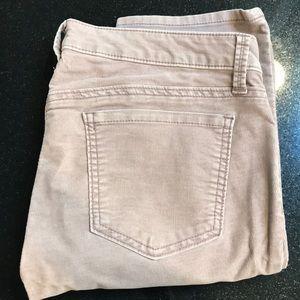 LOFT - Modern Slim Corduroy Mauve Pants